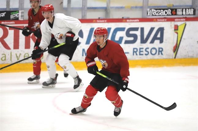 Stuart Percy är en tvåvägsback med erfarenhet av NHL-spel. 27-åringen ska nu hjälpa Sport nå slutspel.