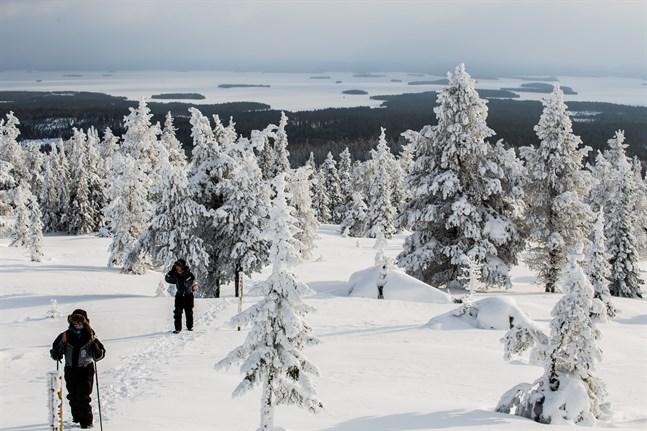 Turismen till norra Finland har drabbats hårt av coronapandemin.