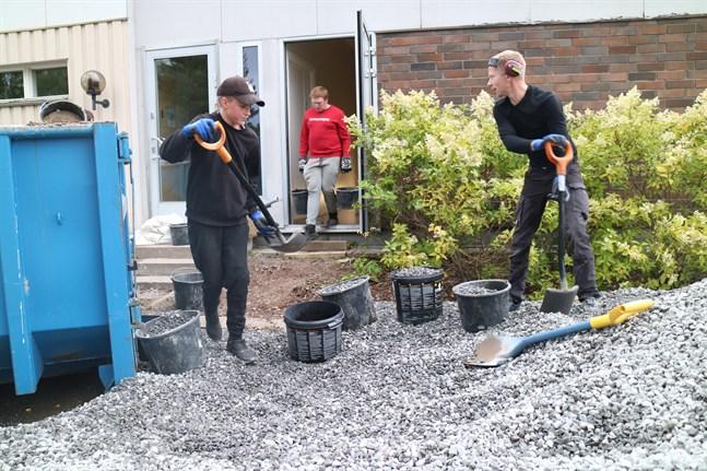 David Sund och Kristian Heikkilä skyfflar grus i hinkar som sedan bärs ner i källaren. Alex Enkvist bär upp lera som grävts ur grunden.
