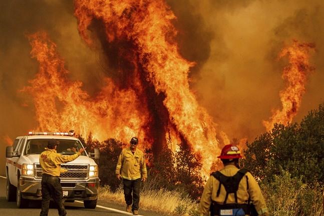 USA:s president Donald Trump reser till Kalifornien för att där få höra mer om de omfattande bränderna. Arkivbild.