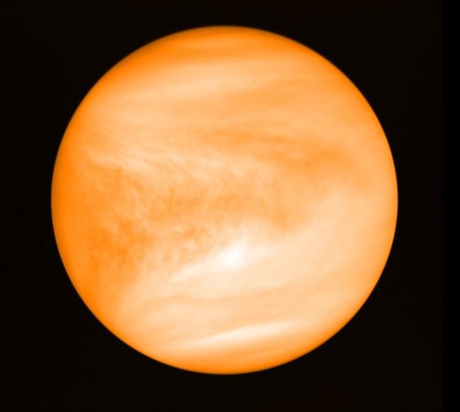 Venus – med ett nyupptäckt ämne i atmosfären som möjligen skulle kunna indikera liv. Arkivbild.