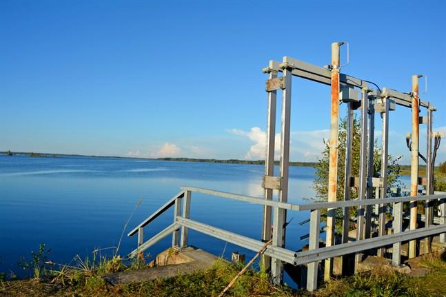 Dammen som reglerar vattennivån i Närpes å ska renoveras i höst. Ån börjar här i Kivi- och Levalampi konstgjorda sjö i Kurikka.
