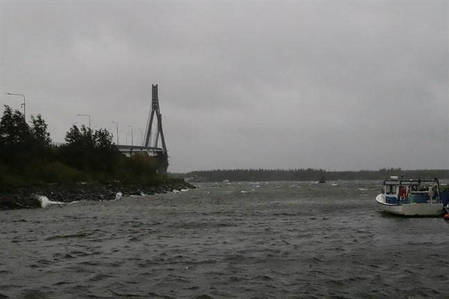 Den kraftiga vinden har orsakat elavbrott i stora delar av Österbotten.