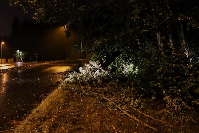 Vid 21.30 tiden hade Österbottens räddningsverk redan svarat på 30 mindre uppdrag. På Västerskogsvägen i Gerby föll ett träd över vägen, men det röjdes snabbt undan och lämnades i vägrenen.