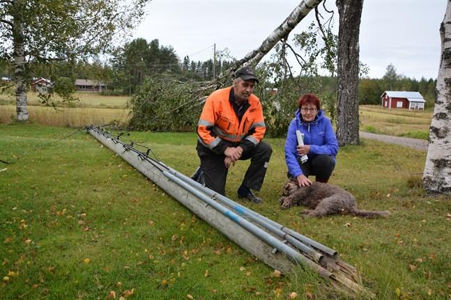 Christer Norrgård och Lena Jansson i Nämpnäs hade en strömförande elkabel på sin gräsmatta i flera dagar. De hade fullt sjå att hålla hunden Siri borta från den.