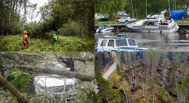 Stormen Aila ställde till det för bland annat skogs-, bil- och båtägare.