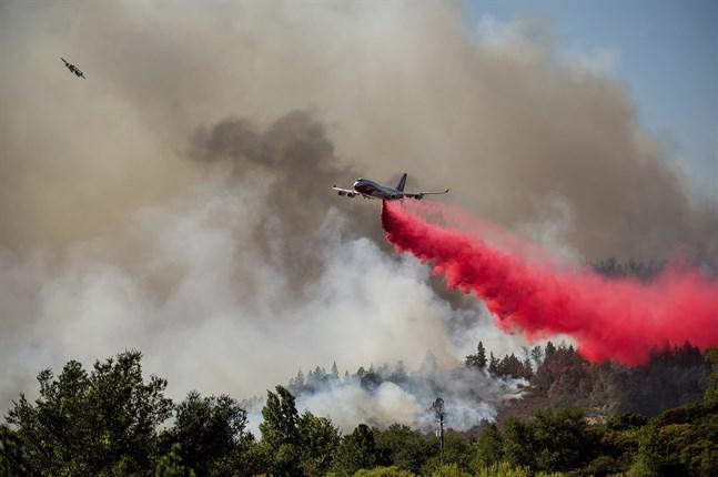 En omfattande skogsbrand rasar i Napadalen i Kalifornien.