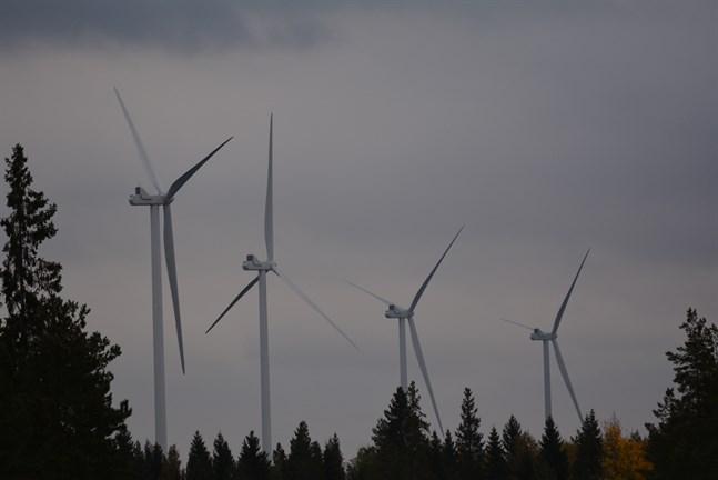 Planläggningssektionen förordar att en ny miljökonsekvensbedömning görs över den planerade vindkraftsparken Åback i Lappfjärd och Tjöck.