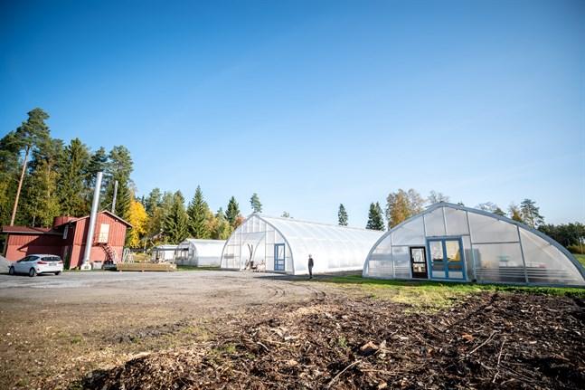 Ihamäen Puutarha har expanderat genom åren, vilket konkret resulterat i flera växthus.