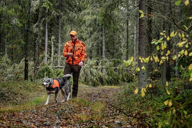 Joni Grankulla, älgjaktledare i Öja, säger att vandrare inte behöver oroa sig för att dela skogen med älgjägare. Däremot behöver de vara medvetna om att hundar springer lösa. Här är han tillsammans med tiken Fanni.