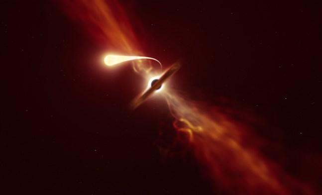 När en stjärna strimlas sönder och spagettifieras av ett svart hål ger den ifrån sig energi. Stjärnan flammar upp, något astronomerna kan upptäcka.