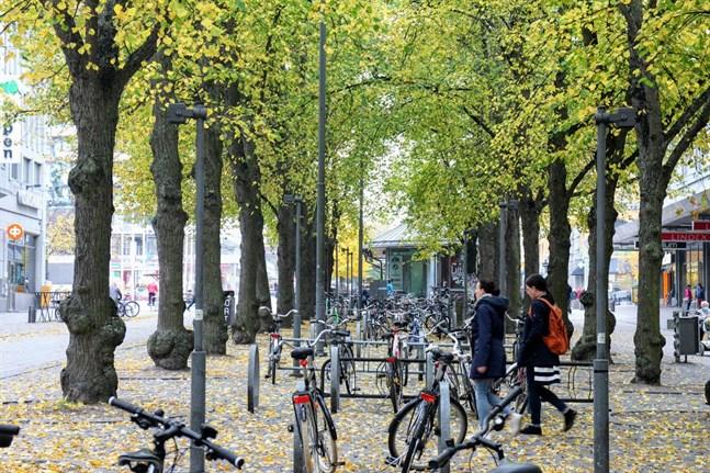 Hösten kom till Vasa med smittade studerande utan eller med lindriga symptom. Det blev början på landets värsta coronautbrott.