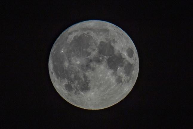 Månen kan innehålla mer vatten än vad man tidigare trott. Arkivbild.