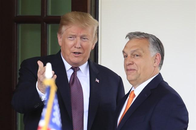 President Donald Trump välkomnar Ungerns premiärminister Viktor Orbán till Vita huset i maj 2019. Arkivbild.