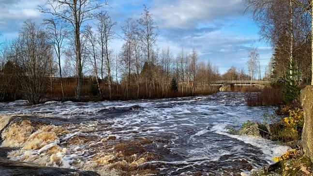 Vattennivån i Malax å stiger på tisdagsförmiddagen men börjar småningom sjunka enligt Sykes prognoser.
