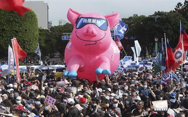 Demonstranter protesterar mot beslutet att tillåta import av amerikanskt fläsk från grisar som matats med ett tillväxthormon som är förbjudet i EU och Kina.