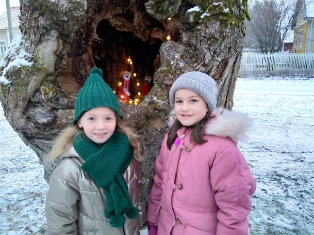 Ingrid Hellbom, Tilda Kallio och deras klasskompisar i tvåan har gjort ett hem åt tomtarna i trädet.