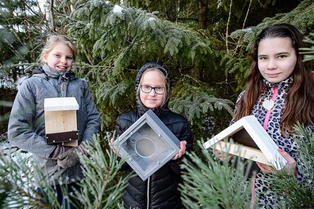 Matilda och Mikaela Esselström och Yasminé Smeds har spikat ihop en del av fågelborden. Men de har också fått hjälpa av familjevännen Ralf Mård i Kattilakoski.