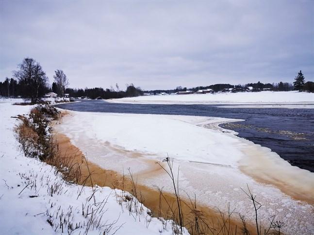 Det kalla och blåsiga vädret har gjort att det har börjat bildas mer kravis vid forsarna i Esse å.