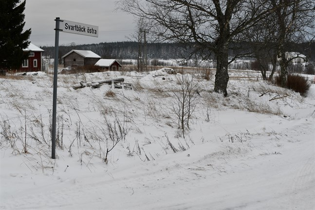 Skogen i bakgrunden utgör en del av den planerade Bredåsens vindkraftspark.