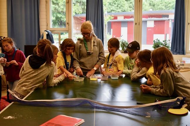 Hobbyverksamhet för barn ska stoppas först då inga andra utvägar finns, anser scouterna. Arkivbild.