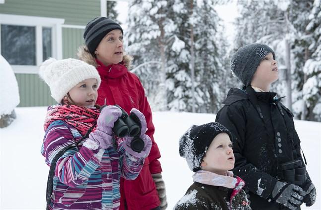 Veera, Heidi, Iiro och Lauri Moilanen deltar i evenemanget hemma i trädgården.