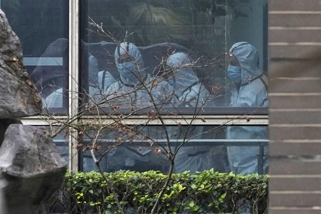 WHO:s utsända experter har de senaste veckorna utrett coronavirusets ursprung på plats i Kina. Här besöker de provinsen Hubeis djursmittskyddsmyndighet den 2 februari.