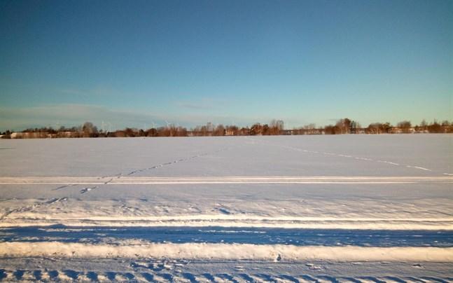 Vargar i Övermark närmade sig bebyggelsen under veckoslutet. På bilden  tagen i lördags syns spår av varg.