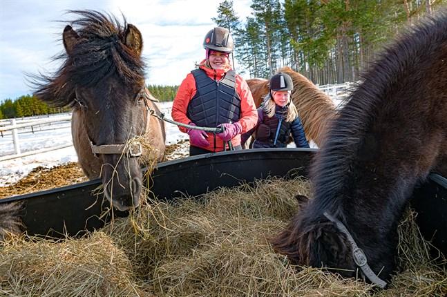 Det är två hungriga islandshästar som Emelie Pitkäkangas och Sibel Käld hämtar från hagen. De ser framemot att få rida på 4H:s stalldag.
