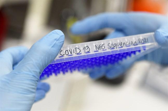 Sekvenseringen visade att samtliga prover som skickats in från smittkedjan på Nyslottsbussen var av den sydafrikanska virusvarianten.