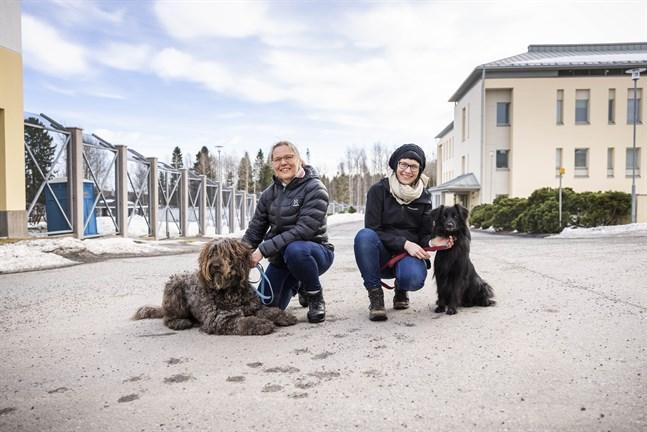 Hundar används inom terapin på Gamla Vasa sjukhus. Alice Keski-Valkama och Rémi jobbar inom psykoterapin medan ergoterapi är Piia Kiurus och Simppas område.