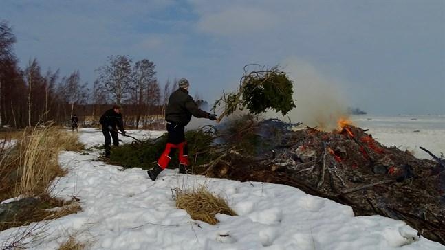 Kim Backström och Frej Lindfors matar ris på Replot UF:s påskbrasa redan på lördagen. I bakgrunden skymtar ordföranden Jenny Backström som filmade och fotade.