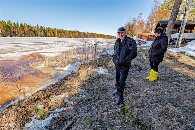 Leif och Leila Sundholm har aldrig behövt oroa sig för sin egendom när vattnet stigit i Perho å i Rödsö. Men för många är islossningen en stor händelse som lockar folk till åns strand.