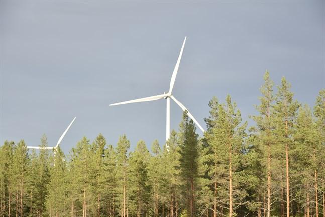 Det finns misstanke om jäv i besluten om planläggningen av vindkraft i Juthskog.