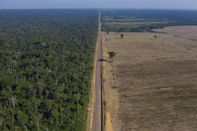 Ytterst lite att jordens markytor är fortfarande oanfrätta av mänskliga aktiviteter. Arkivbild.