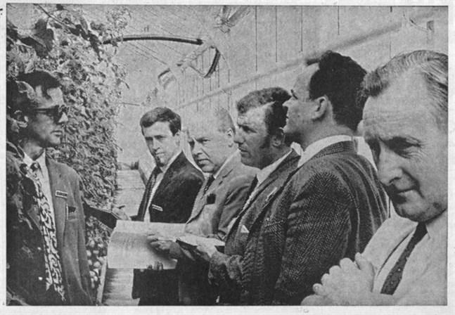 Bilden är tagen i Tor Berlins växthus i Kalax, där de engelska gästerna på onsdagen med stort intresse stiftade bekantskap med hans tomatodlingar.