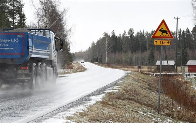 I fjol skedde rekordmånga viltolyckor i Finland. Även i Sydösterbotten har det skett en ökning.