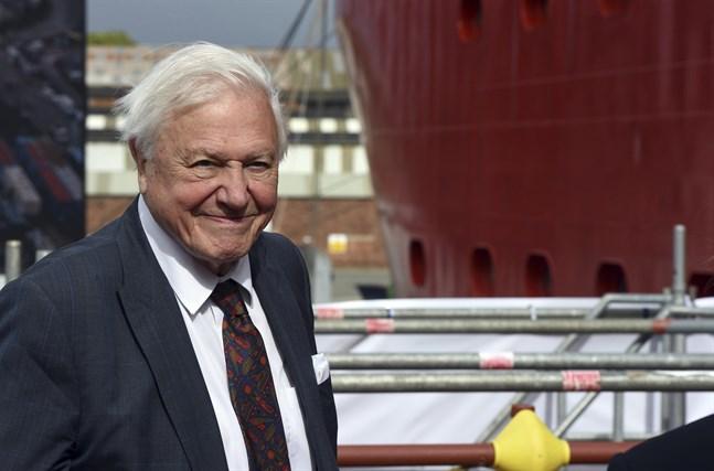 David Attenborough fyller 95 år på lördagen. Arkivbild.