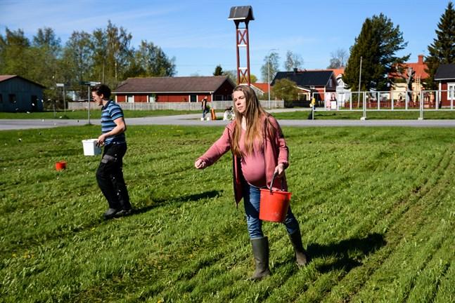 Miriam Bondén ville göra något för miljön i Kaskö och det resulterade i ett försök att anlägga blomsterängar på två av stadens torg. Biolog Torgny Backman till vänster bidrar med expertis.