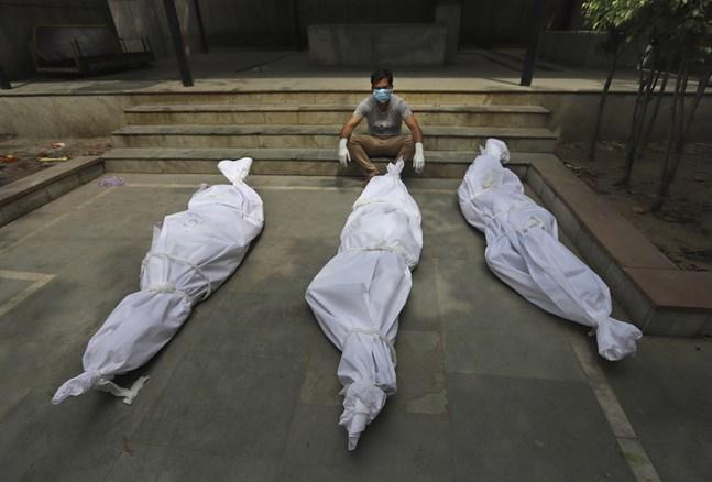 En man i Indien väntar på kremering av en anhörig. Hittills har runt 290000 människor smittade med covid-19 dött i Indien och totalt har 3,4 miljoner avlidit av sjukdomen i världen, men WHO tror att den egentliga siffran är 6–8 miljoner människor. Arkivbild.