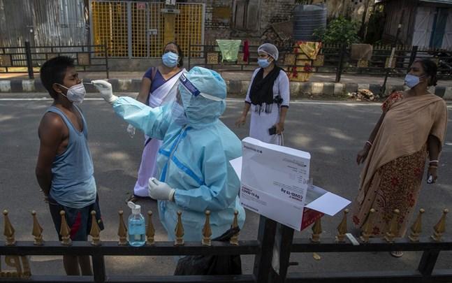 En pojke testas för covid-19 i Guwahati i östra Indien.