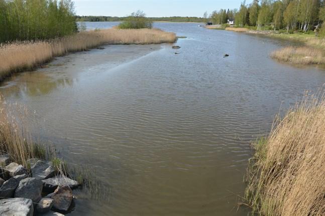Farleden mellan Fagerö och Långvikfjärden blir nästan torrlagd vid lågvatten. Nu undersöks möjligheten att muddra den.
