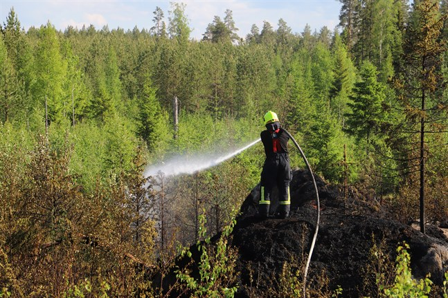 Det är kruttorrt ute i skog och mark just nu, och risken för skogsbränder är hög i hela landet. Om det blåser kan branden sprida sig mycket snabbt, varnar Meteorologiska Institutet.