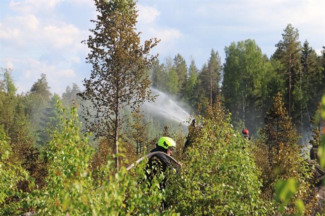En terrängbrand tog fart i Maxmo på onsdagen efter att en person bränt ris i området.