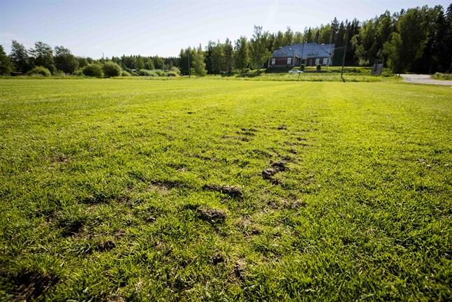 På längre håll ser fotbollsplanen i Sundom vågig ut. På närmare håll kan man se traktorspår från förra hösten.