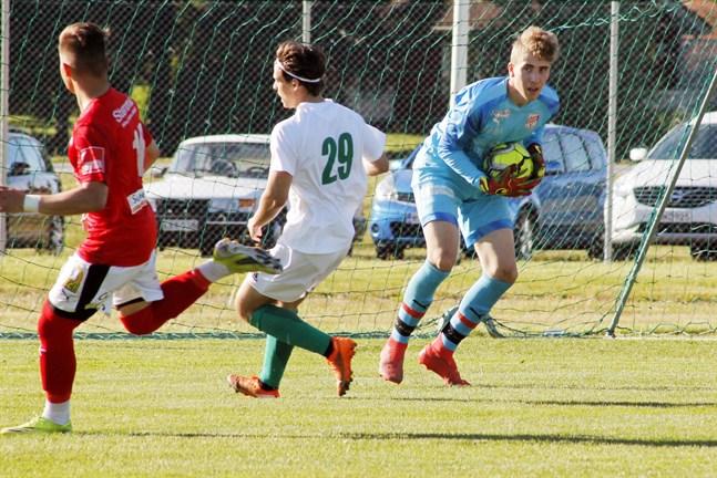 Sjutton år gamla målvakten Matias Anttila har fått axla en stor roll i Sporting. Han spelar både i reservlaget i femman och i representationslaget i trean. Här hinner han före VPV:s Joel Mäkelä på en boll.