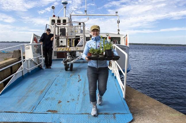 Allt måste forslas med den lilla färjan. Marie Burstedt bär i land en låda med blommor som ska höja trivseln vid huset på Norrbyskär. Hon har tagit med blommorna från Umeå.