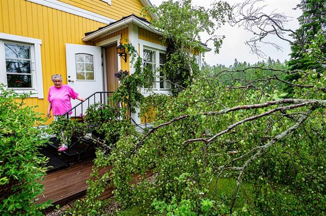 Gårdsbjörken knäcktes och föll ner mot Lolan och Atle Granqvists hus på Hagafolksvägen i Öja på tisdagen den 22 juni.