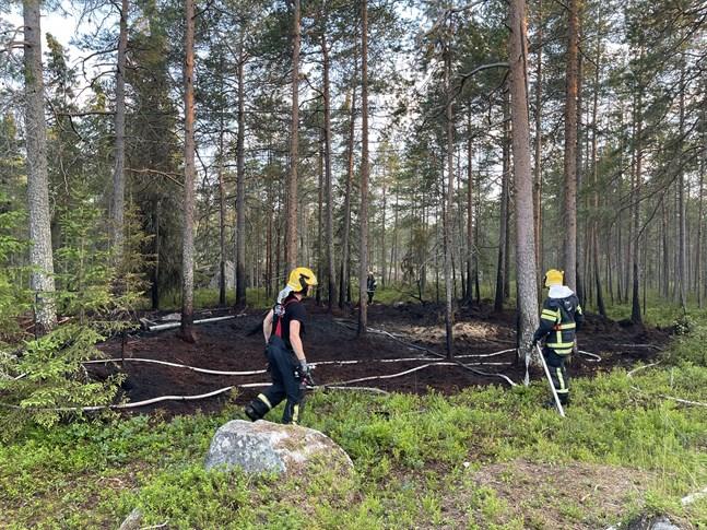 En terrängbrand härjade i Larsmo på måndag kväll.