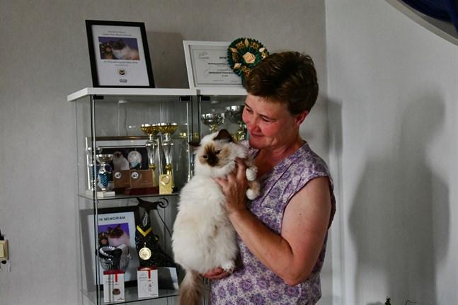 Michaela Senkas började ställa ut sina katter 1995. Före coronapandemin deltog hon i utställningar nästan varje månad.